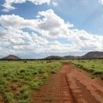 On the road Uluru to Pipalyatjara